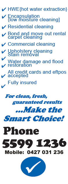 smart choice carpet cleaning
